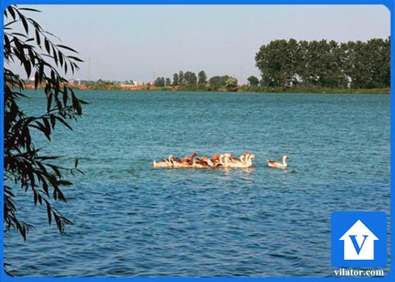 روستای اهلم محمودآباد ویلاطور