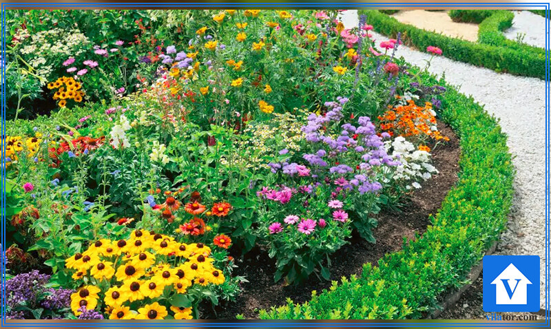 گل و گیاه چهار فصل ویلاطور