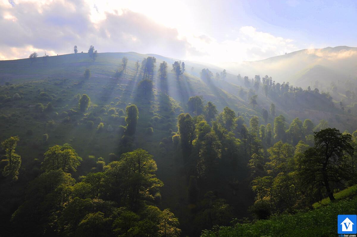خرید ویلا جنگلی ماسال