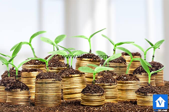 سرمایه گذاری با رشد مثبت ویلاطور