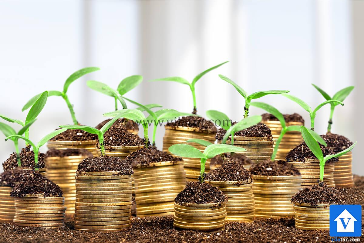 سرمایه گذاری با رشد مثبت